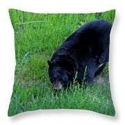 A Bear Over There Throw Pillow