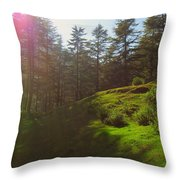 A Beautiful Day In Woods Throw Pillow