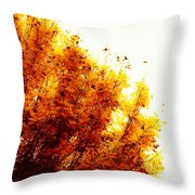 A Beautiful Fall Day Throw Pillow
