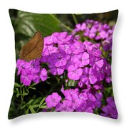 A Beautiful Landing Throw Pillow