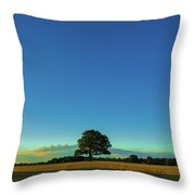 A Beautiful Lonely Tree Throw Pillow