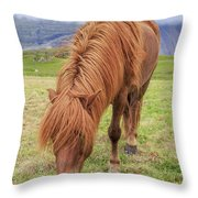 A Beautiful Red Mane On An Icelandic Horse Throw Pillow