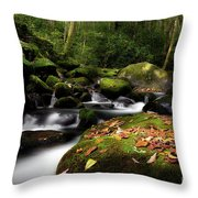 A Beautiful Season Throw Pillow