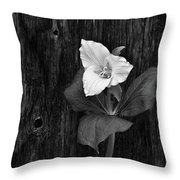 a beautiful Trillium  Throw Pillow