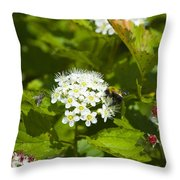 A Bee And A Fly Meet On A Flower Throw Pillow