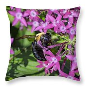 A Bee See Throw Pillow