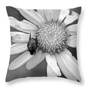 A Beetle And A Daisy  Throw Pillow