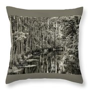 A Bend In The Creek Throw Pillow