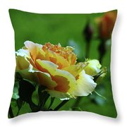 A Benton City Rose  Throw Pillow