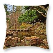 A Better Place - Deep Cut Gardens Throw Pillow