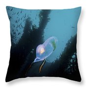 A Bioluminescent Tunicate, Catalina Throw Pillow