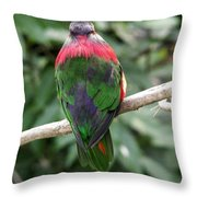 A Bird's Perspective Throw Pillow