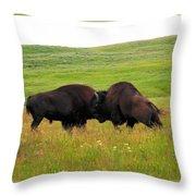 A Bison Brawl Throw Pillow
