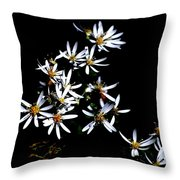 A Black And White Study Throw Pillow
