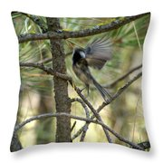A Black Capped Chickadee Taking Off Throw Pillow