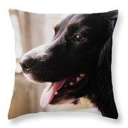 A Black Dog Throw Pillow