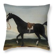 A Black Horse Held By A Groom Throw Pillow