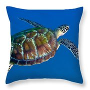 A Black Sea Turtle Off The Coast Throw Pillow by Michael Wood