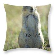 A Black-tailed Prairie Dog In Montana Throw Pillow