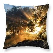 A Blast Of Sunrise Throw Pillow