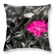 A Bloom Of Color Throw Pillow