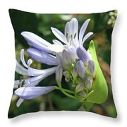 A Blooming Bud Throw Pillow
