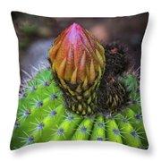 A Blooming Cactus Throw Pillow