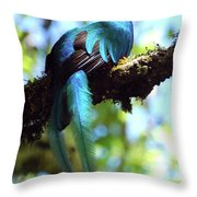 A Blue Stand Out Throw Pillow