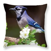 A Bluejay Bouquet Throw Pillow