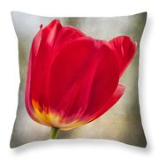 A Bold Red Embrace Throw Pillow