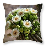 A Bouquet Of Saguaro Blossoms Throw Pillow
