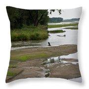 A Braided River Throw Pillow