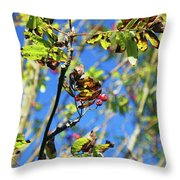 A Branch Standing Out From The Crowd Throw Pillow