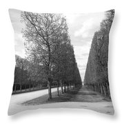 A Break In The Trees Throw Pillow