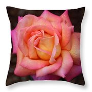 A Breath From Sarasota Throw Pillow