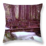 A Bridge To Paradise Throw Pillow