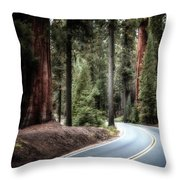 A Bright Future Around The Bend Throw Pillow
