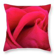 A Bright Pink Rose Close-up Throw Pillow