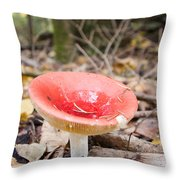A Bright Red Mushroom Blooms Throw Pillow