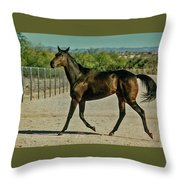 A Brisk Paddock Romp Throw Pillow