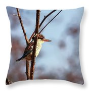 A Brown-hooded Kingfisher  Throw Pillow