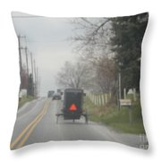 A Buggy Travels Down A Road In Spring Throw Pillow