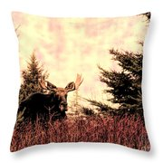 A Bull Moose Dream Throw Pillow