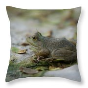 A Bullfrog At The Sunset Zoo Throw Pillow