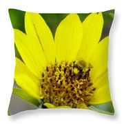 A Bumble Hunkering Down Throw Pillow