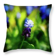 A Bunch Of Flowering Two-tone Grape Hyacinths, No.2. Throw Pillow