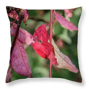 A Bunch Of Red Leaves Throw Pillow