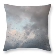 a Burst of Birds Throw Pillow