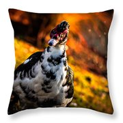 A Burst Of Excitement Throw Pillow