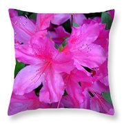 A Burst Of Pink Throw Pillow